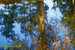 prace fotograficzne_16
