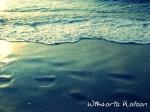 prace fotograficzne_3