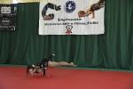 Mistrzostwa w fitness sportowym po raz VI_7