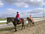 Sekcja jeździecka
