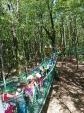 Wycieczka do Deli Park