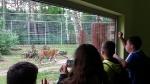 Z wizytą w zoo foto